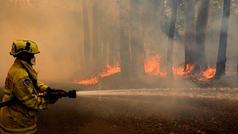 A Gloucester fire crew member fights flames from a bushfire at Koorainghat, near Taree in the Mid North Coast region of NSW, Australia, November 12, 2019