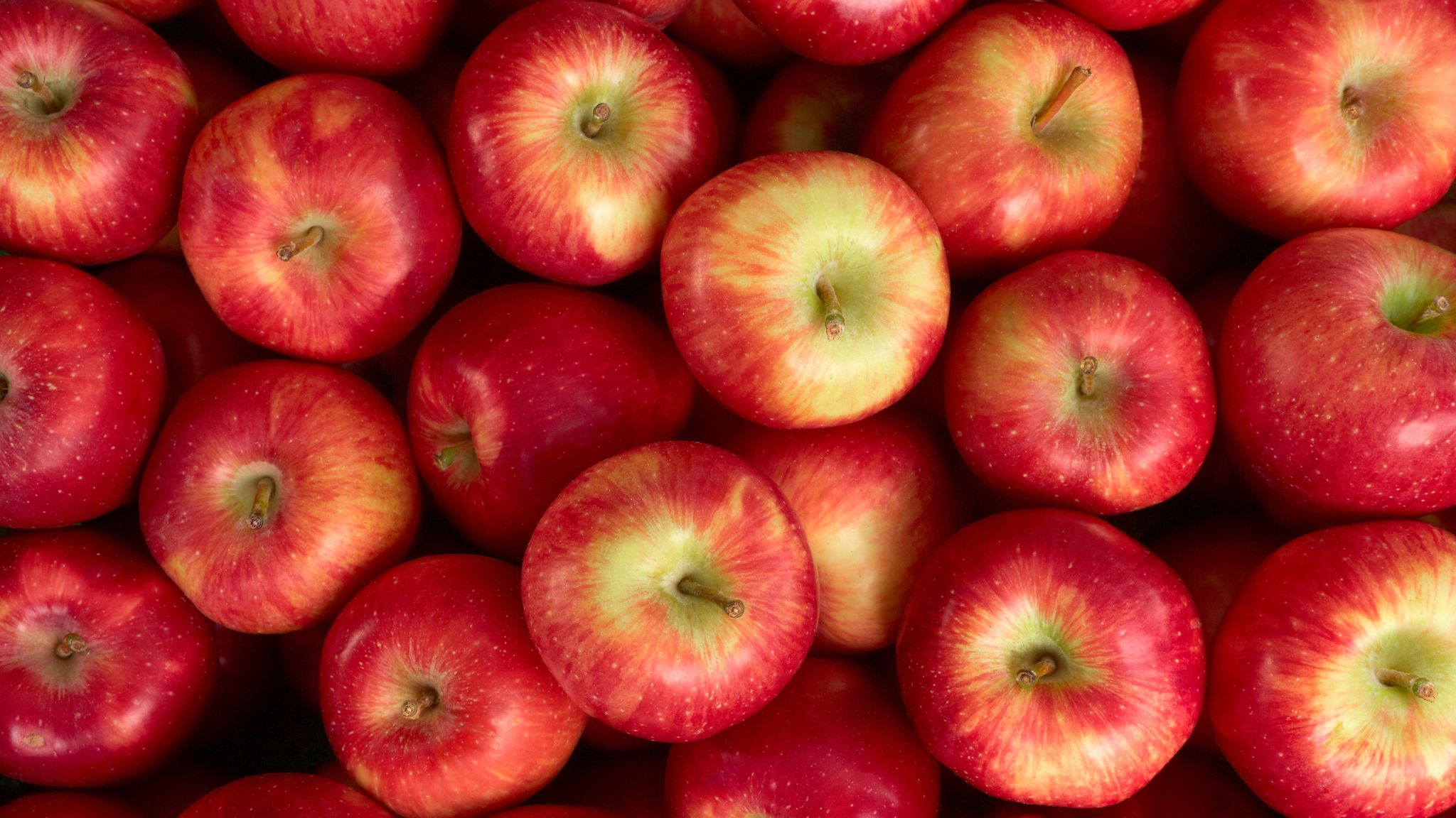 Two apples a day really do keep the doctor away, research says ...