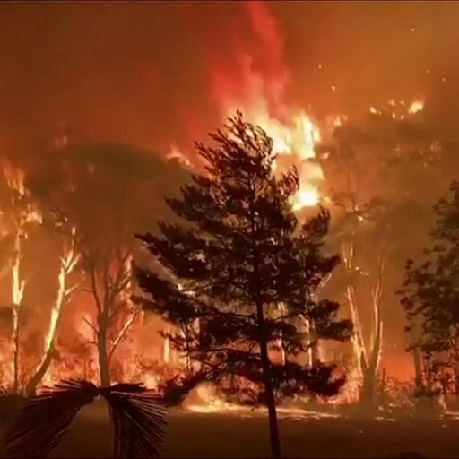 Australia bushfires: 'Backburning' operation causes damage to buildings in New South Wales