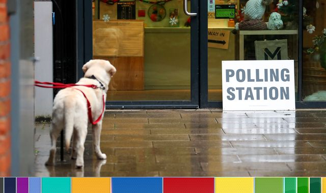General Election gets paw-litical as voters snap their dogs at the polls