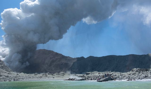 New Zealand orders 1.2 million sq cm of skin from US to treat volcano patients