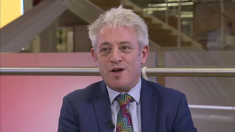 Bercow: 'I have never bullied anyone, in any way, to any degree'