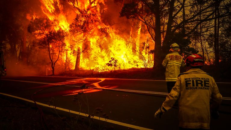 Firefighters tackle flames in Sydney earlier this month