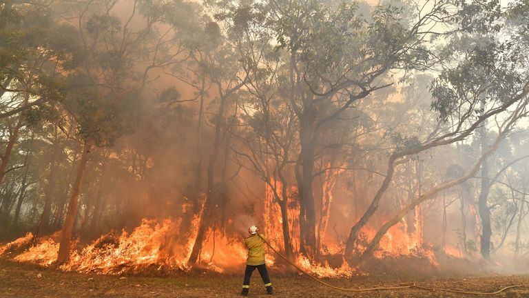 A firefighter conducts back-burning measures in the Central Coast, New South Wales, earlier this month