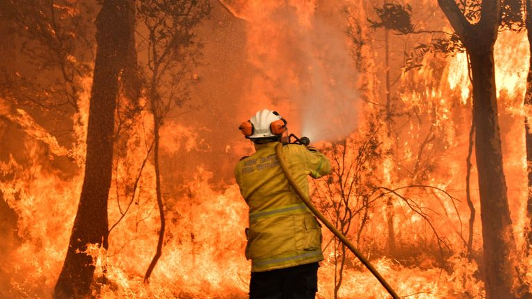 A firefighter conducts back-burning measures in Central Coast, New South Wales, earlier this month
