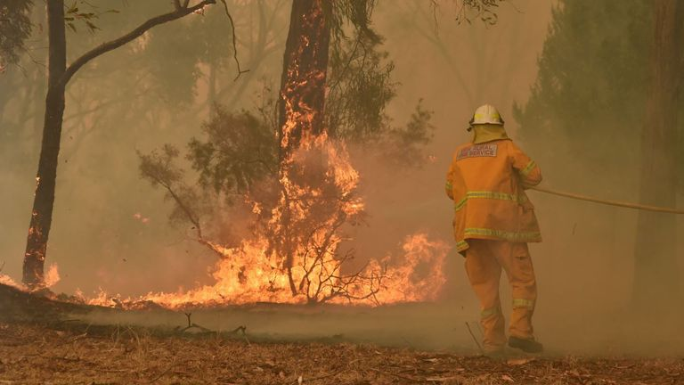 Firefighter tackles a bushfire in Balmoral