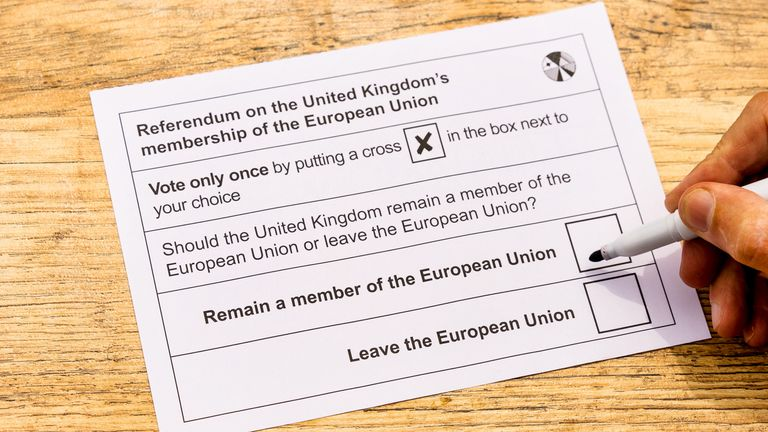 The 2016 EU referendum is defining how people are voting this election