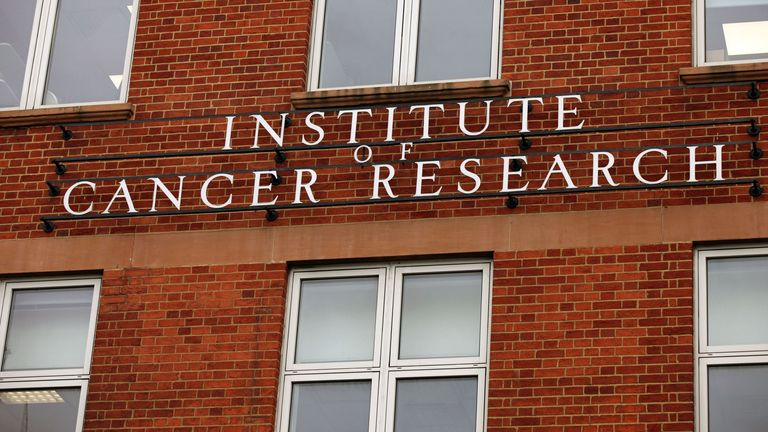 The Institute of Cancer Research found less than a third of the public believe cancer is a disease that can be managed for years