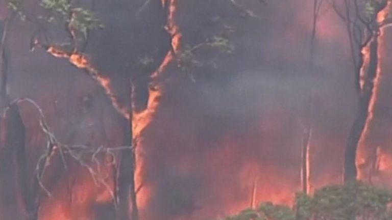 New South Wales, Australia's most populous state, has declared its second state of emergency in two months as extreme heat and strong winds fanned scores of uncontrolled bushfires.