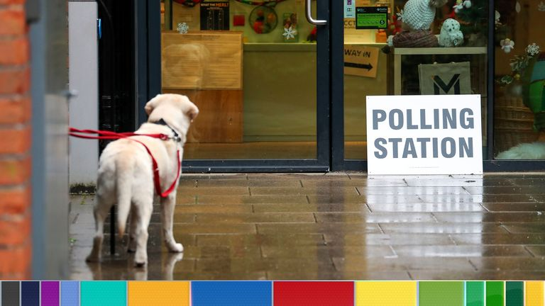 Dogs are accompanying owners across the country to the polls
