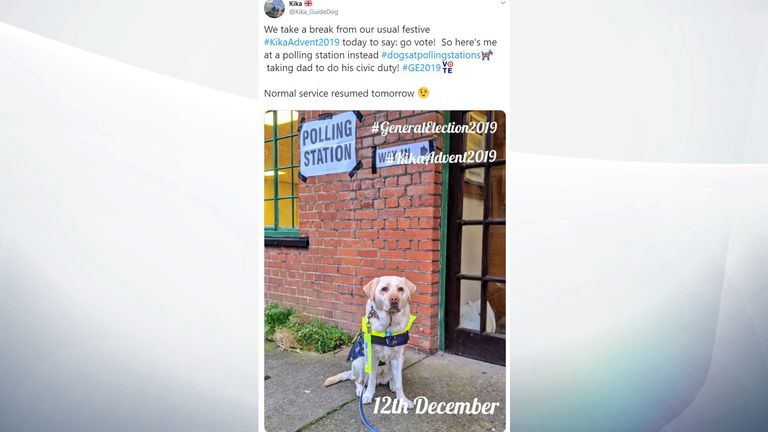 Kika the guide dog has assisted taking her owner to the polls. @Kika_GuideDog