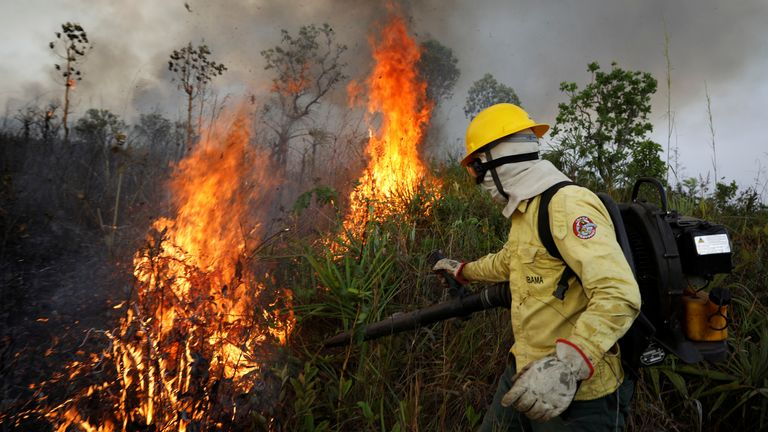 Fire in Amazon rainforest