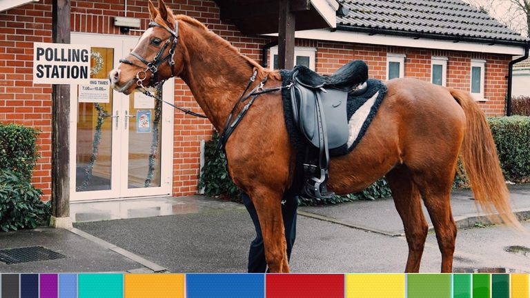 Horsing around outside a polling station. Pic: Wiltshire Council
