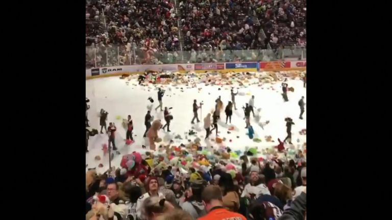 Fans of the Hershey Bears ice hockey team covered their team's home arena with more than 45,000 teddy bears in a record haul for charity.
