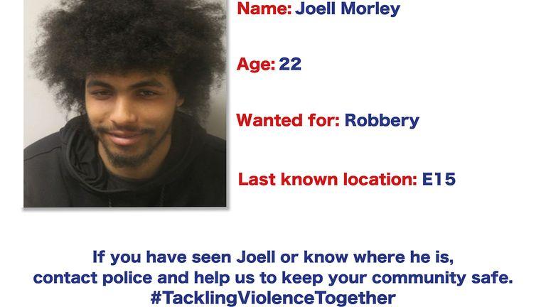 Joell Morley