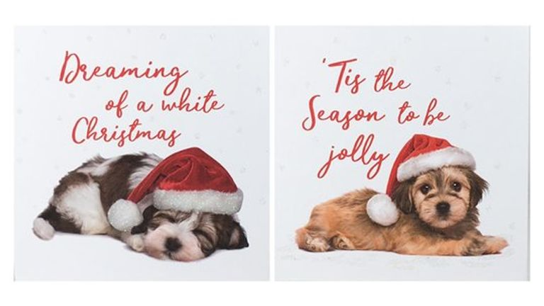 Tesco's charity Christmas cards raise £300,000 each year for three major British health charities. Pic: Tesco