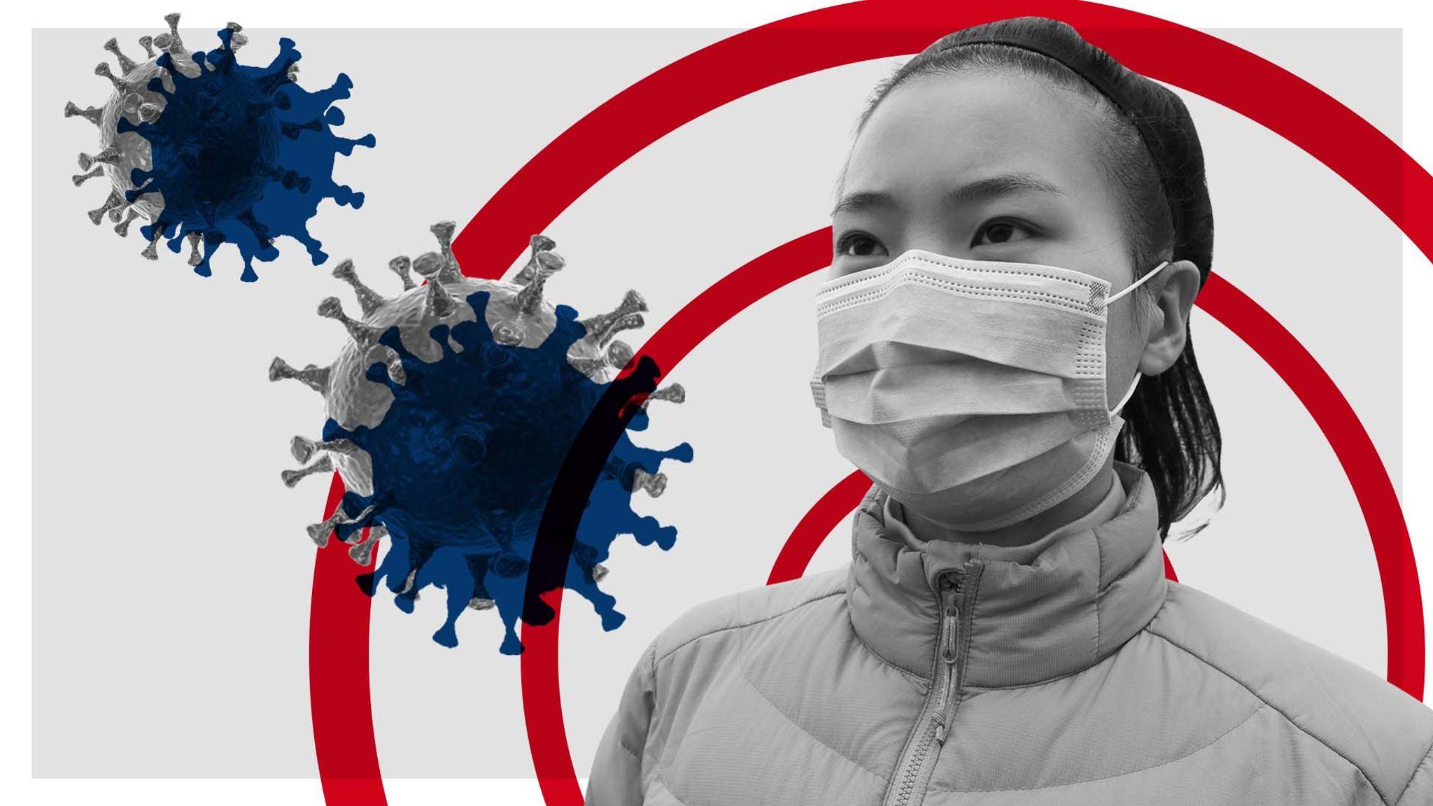 coronavirus the virus