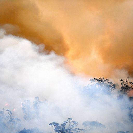 Australia's bushfires in pictures