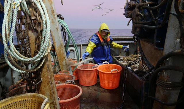 Brexit: 'Fish for finance' battle looms ahead of EU-UK trade talks