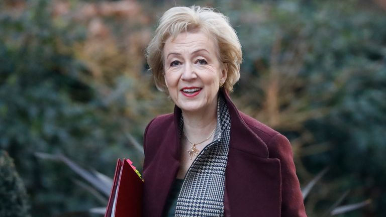 Business Secretary Andrea Leadsom