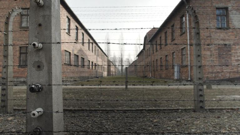 'They threw babies alive into the oven': Survivors mark Auschwitz liberation anniversary