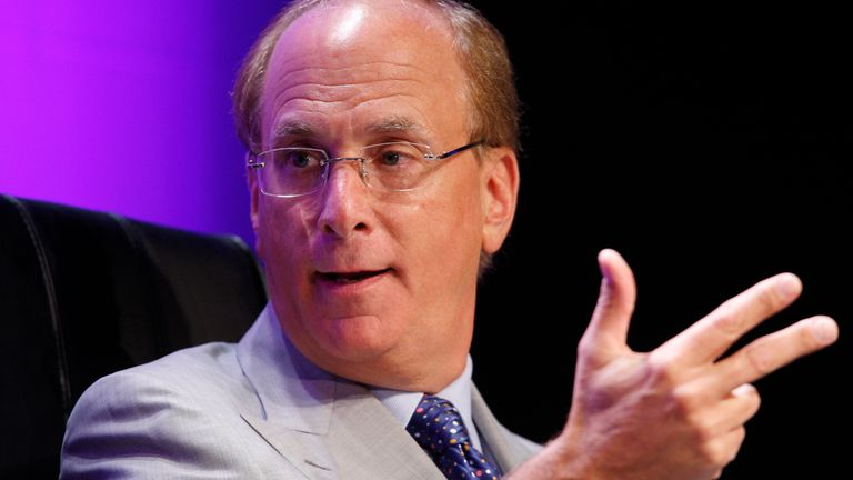 Laurence Fink is CEO of BlackRock, often called the world's largest shadow bank.