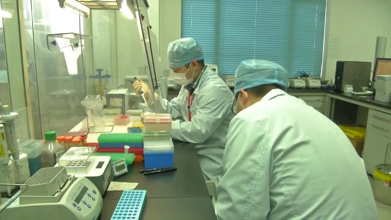 Scientists in China work on a vaccine for the coronavirus
