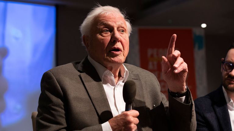 Sir David Attenborough has issued a warning on climate change