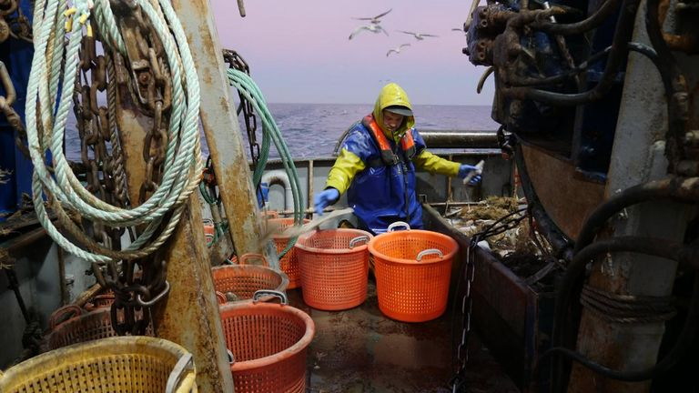 British fishermen hate the common fisheries policy