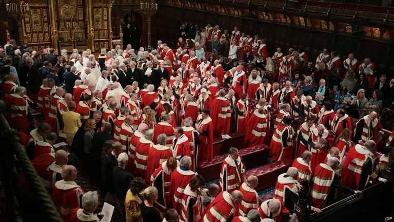 Members of the House of Lords and guests in the chamber ahead of the State Opening of Parliament by Queen Elizabeth II, in the House of Lords at the Palace of Westminster in London.