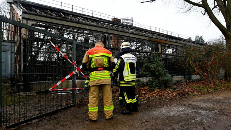 Firefighters observe a burned monkey house at Krefeld Zoo