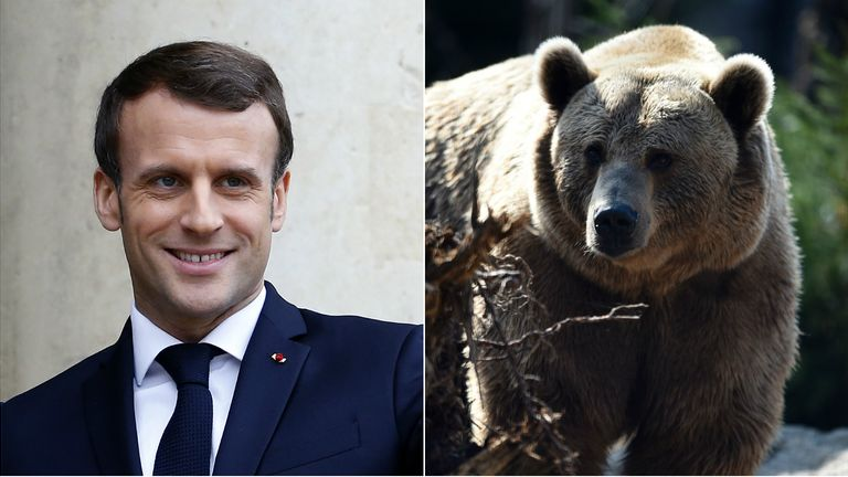 Macron has assured Pyrenaen shepherds he won't release any more brown bears