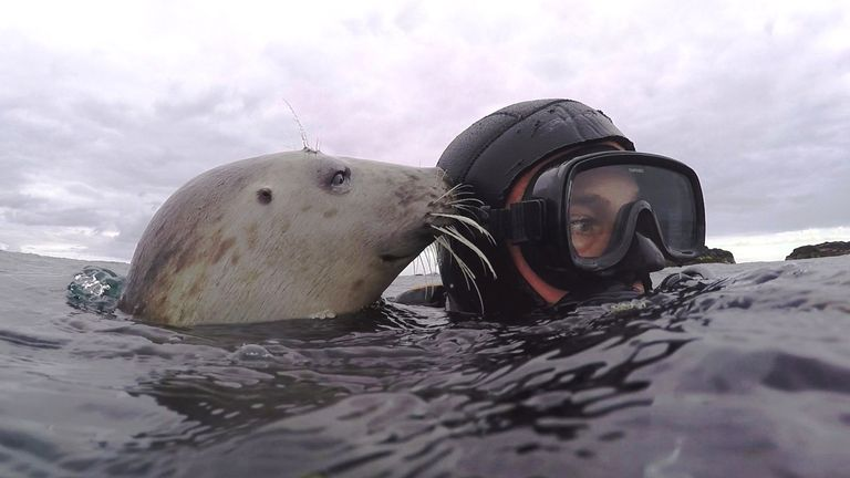 Dr Ben Burville says diving with seals is his 'passion'. Pic: Ben Burville
