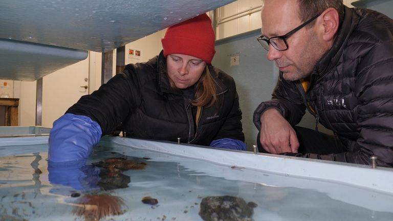 Marine biologist Zoe Waring with Thomas Moore