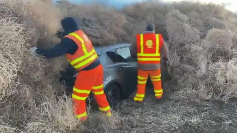 Troopers in Washington state spent 10 hours digging cars and a truck from a carpet of tumbleweeds which blocked State Route 240 on New Years Eve.