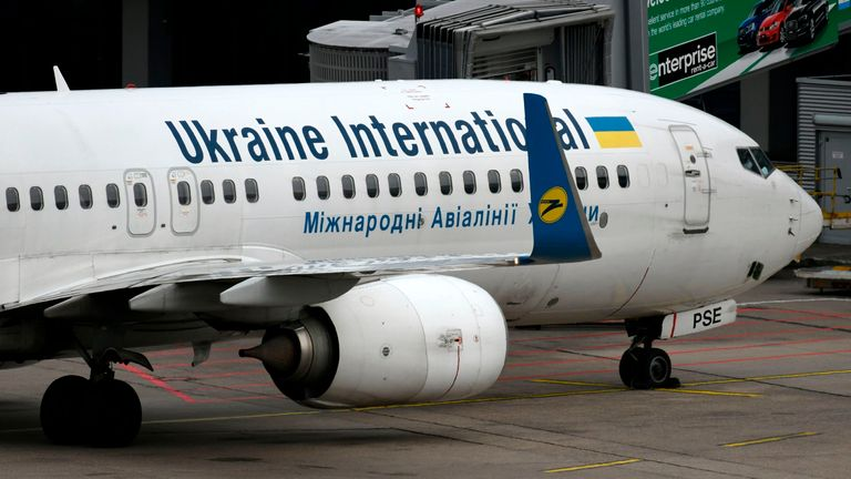 The plane is believed to be a Ukrainian International Airlines Boeing 737-800 (file pic)