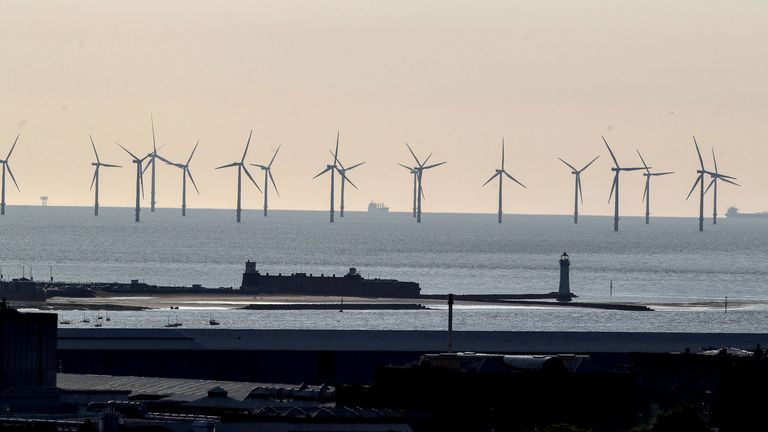 The UK 'is really well-placed forcapturing wind energy or tidal energy', engineers say