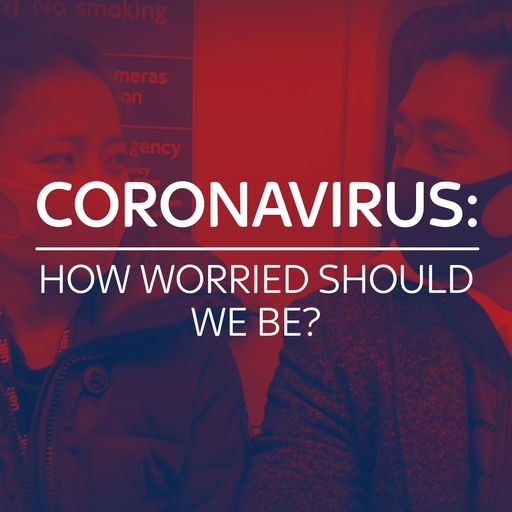 Special report: How bad could the coronavirus outbreak get?