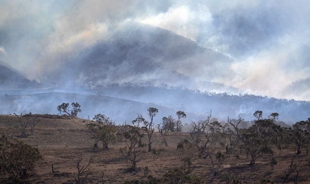 Australia: Bushfires under control in New South Wales for first time in six months