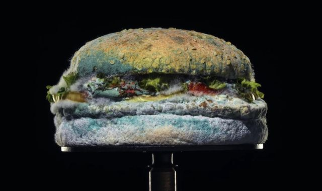Burger King uses mouldy Whopper to promote its signature product