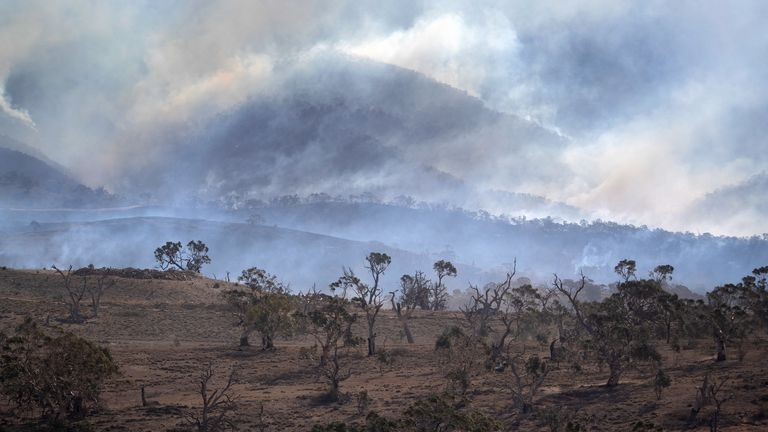 Bushfires burn along a mountainside on February 3, 2020 near Bumbalong, Australia. In many fire affected areas, surviving wildlife are suffering from dehydration and near starvation, due to the widespread habitat destruction and continued drought.