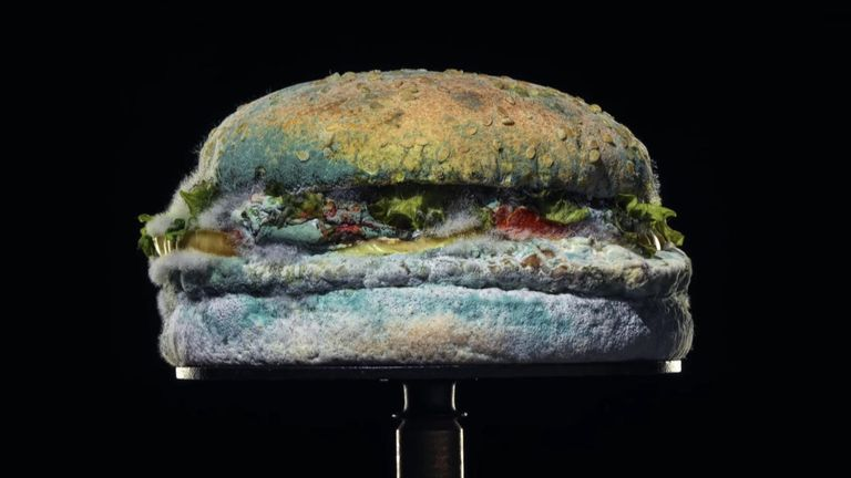 Burger King release advert showing their Whopper decaying over 34 days, showcasing the lack of preservatives in the product