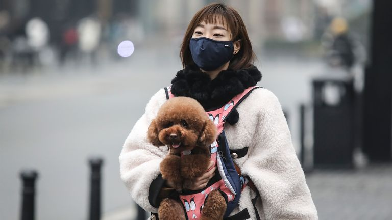 WUHAN, CHINA - JANUARY 31: (CHINA OUT) A woman wears a protective mask as she walks her dog and buys vegetables in an alley on January 31, 2020 in Wuhan, China. World Health Organization (WHO) Director-General Tedros Adhanom Ghebreyesus said on January 30 that the novel coronavirus outbreak has become a Public Health Emergency of International Concern (PHEIC). (Photo by Stringer/Getty Images)
