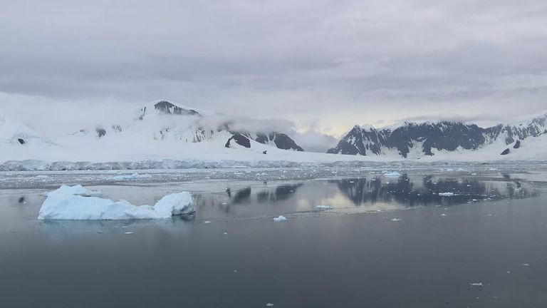 The William Glacier in Borgen Bay has retreated almost a mile in 20 years