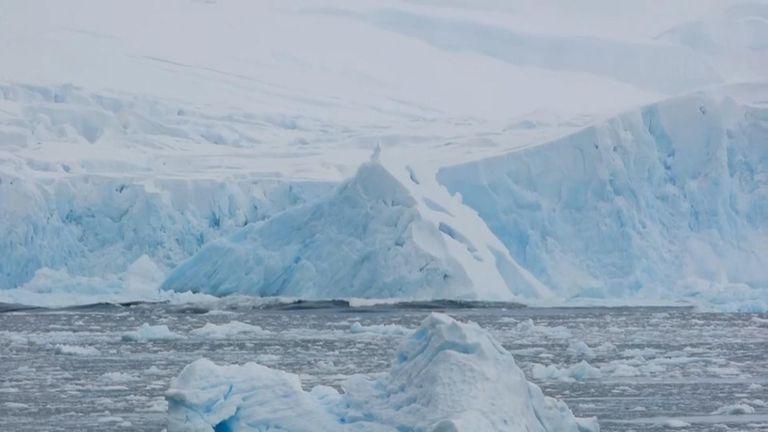 The huge slab was at least 40 metres high. Pic: John O'Duffy/British Antarctic Survey