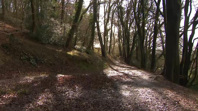 Miles of public footpaths can be found in the British countryside