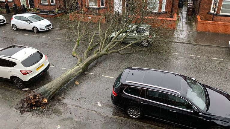 A fallen tree on a car in a street in Wigan. Pic: Victoria Gregson