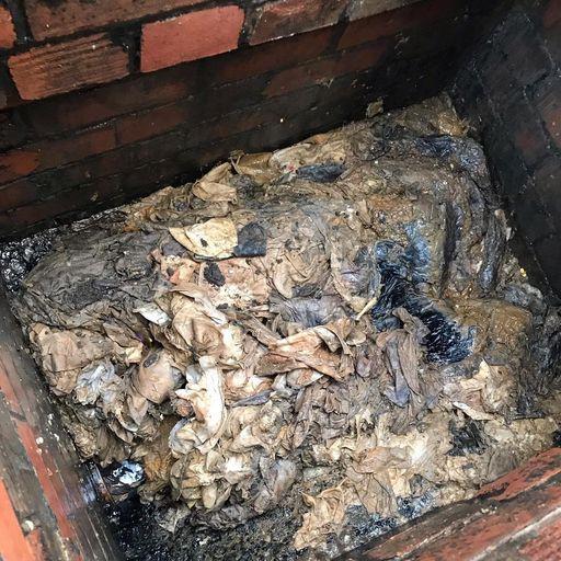 Coronavirus: Why is panic buying of toilet rolls causing blocked sewers?