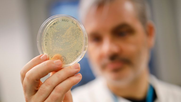 Doctor Paul McKay, who is working on an vaccine for the 2019-nCoV strain of the novel coronavirus, Covid-19,, poses for a photograph with bacteria containing the coronavirus, Covid-19, DNA, at Imperial College School of Medicine (ICSM) in London on February 10, 2020. - A team of UK scientists believe they are one of the first to start animal testing of a vaccine for the new coronavirus that has killed more than 1,000 people and spread around the world. (Photo by Tolga AKMEN / AFP) / TO GO WITH AFP STORY BY WILLIAM EDWARDS (Photo by TOLGA AKMEN/AFP via Getty Images)