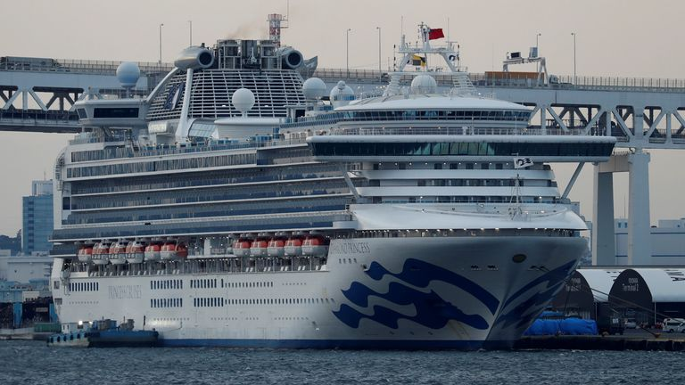 The Diamond Princess at anchor in a harbour in Japan